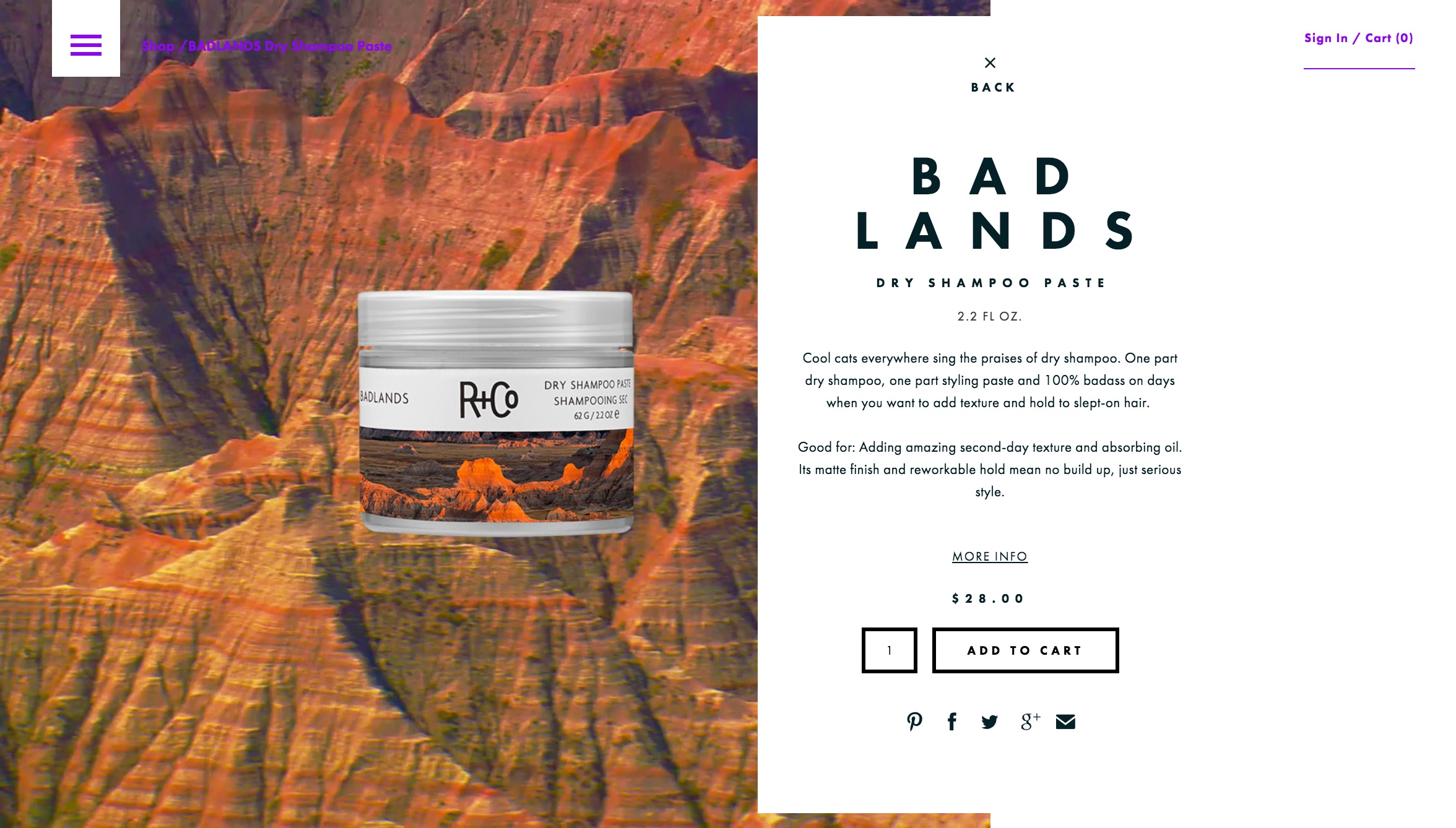 R Co   BADLANDS Dry Shampoo Paste