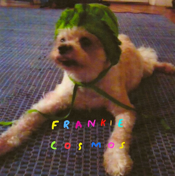 Frankie Cosmos - Zentropy (2014)