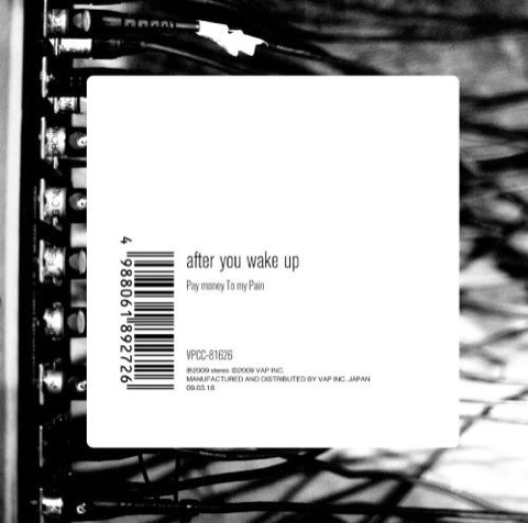 Pay money To my Pain - after you wake up (2010)